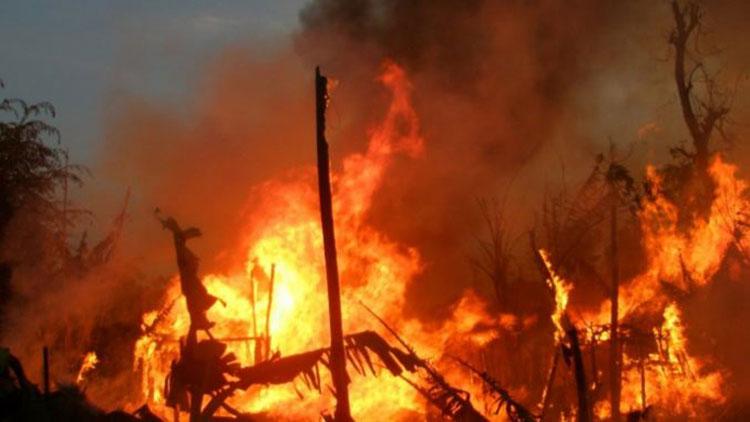 ताप्लेजुङमा आगलागी सात वटा घर जलेर नष्ट